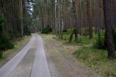 Surprisingly a great part of Muritz National park was smoothly paved like this. In the end of it however, it was all classical dirt road again...